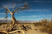 034_usa_2015_deathvalley_california