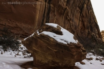 165_usa_2015_capitolreef_utah