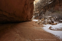 166_usa_2015_capitolreef_utah