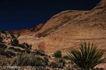 327_usa_2015_redrockcanyon_nevada
